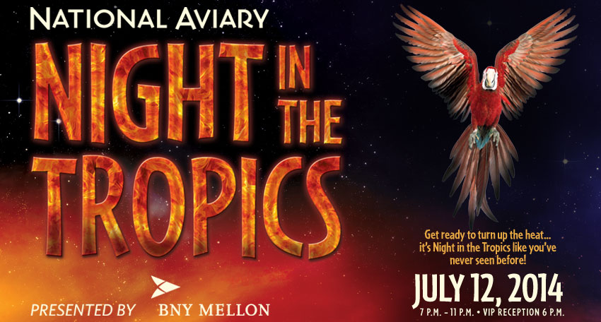 Tickets for Night in the Tropics presented by BNY Mellon in Pittsburgh from ShowClix
