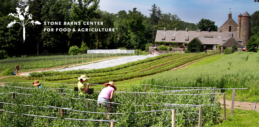 Tickets for Fall Farm Tours in Pocantico Hills from ShowClix