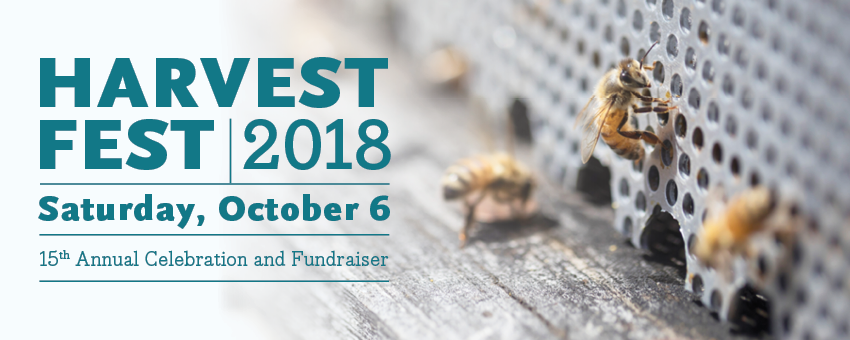 Tickets for Harvest Fest 2018 from ShowClix