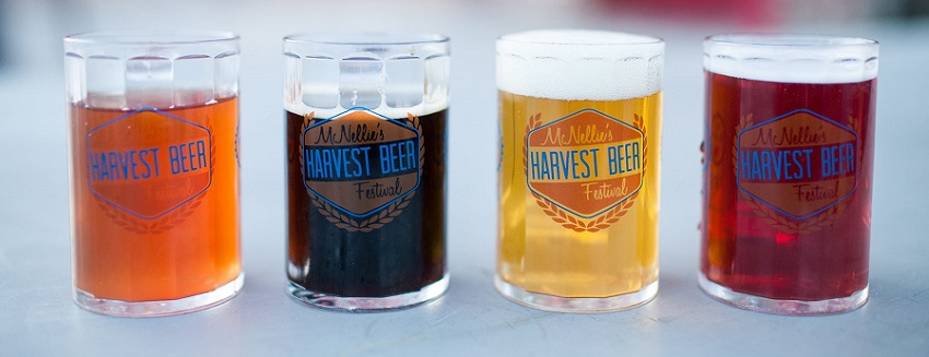 Tickets for 10th Annual McNellie's Harvest Beer Festival in Tulsa from BeerFests.com