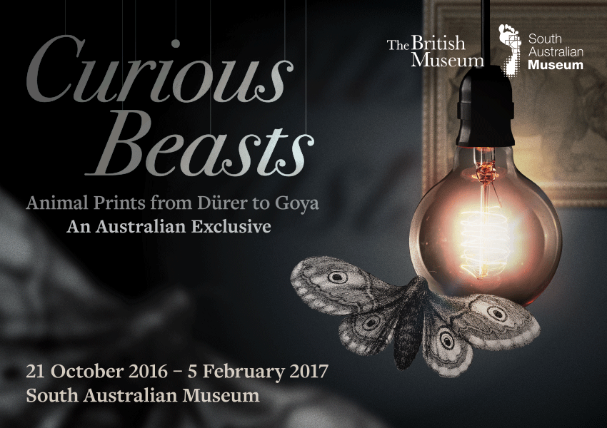 Tickets for Curious Beasts: Animal prints from Dürer to Goya in Adelaide from Ticketbooth