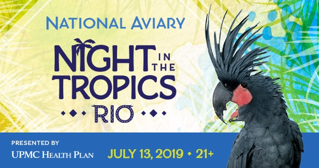 Tickets for Night in the Tropics: Beach Party in Pittsburgh from ShowClix