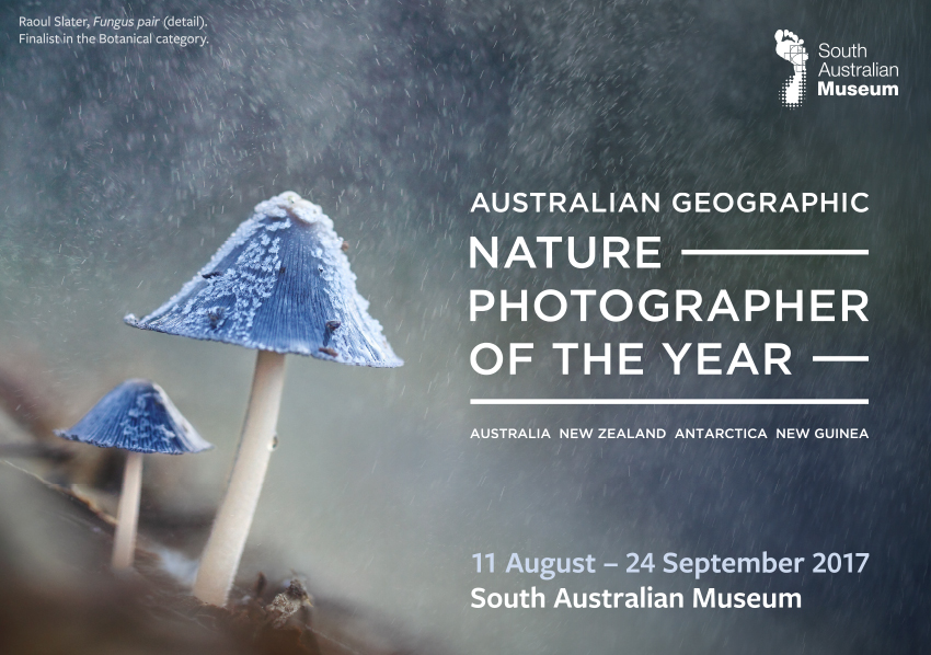 Tickets for Australian Geographic Nature Photographer of the Year in Adelaide from Ticketbooth