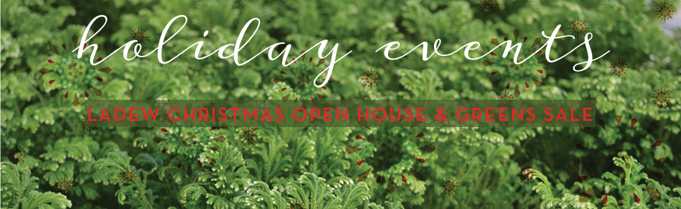 Tickets for Ladew Christmas Open House: Preview Night in Monkton from ShowClix