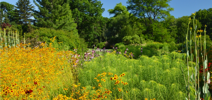 Tickets for Brooklyn Botanic Garden Admission in Brooklyn from ShowClix
