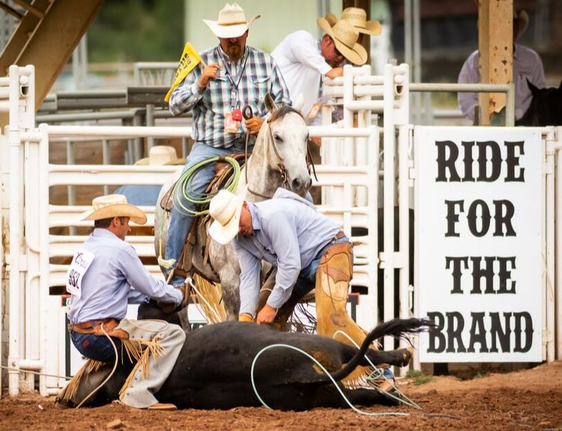 Tickets for Ride for the Brand Ranch Rodeo in Colorado Springs from ShowClix