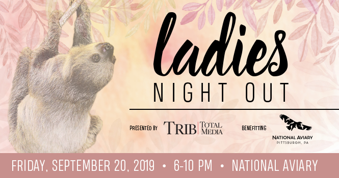 Tickets for Ladies Night Out  (21+) in Pittsburgh from ShowClix