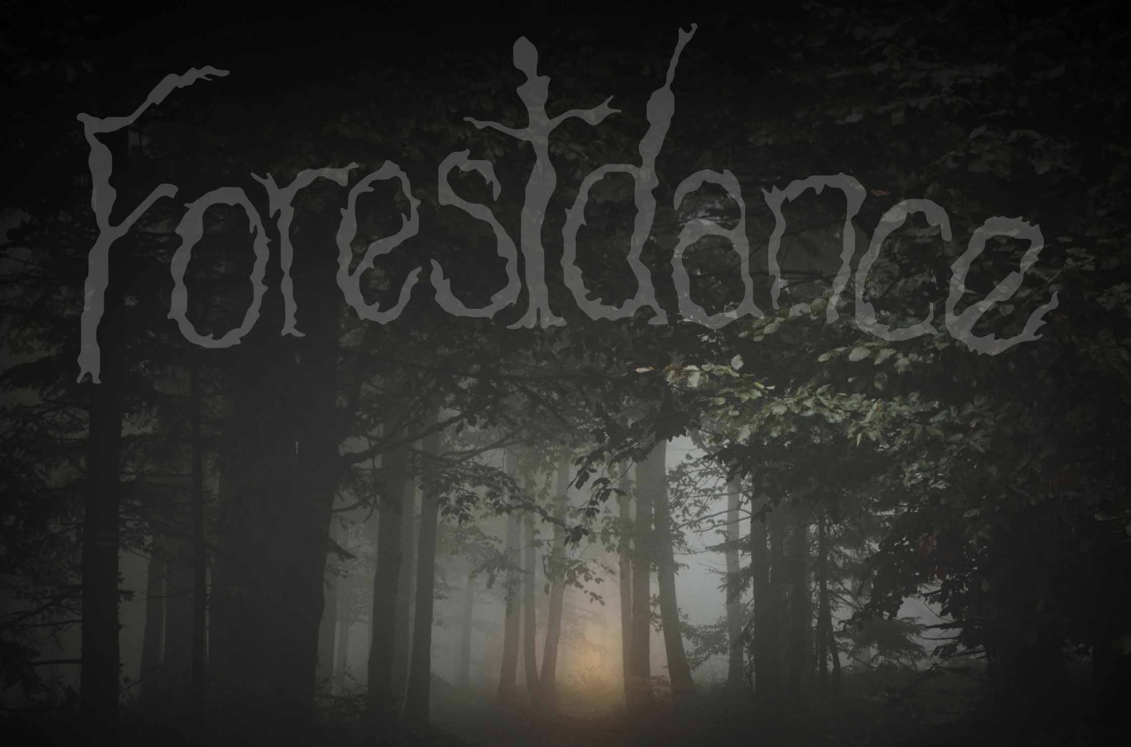 Tickets for Forestdance in Tolland from BrightStar Live Events