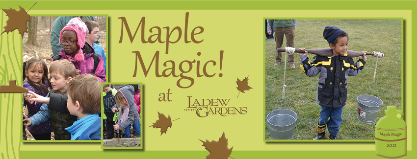 Tickets for Maple Magic in Monkton from ShowClix