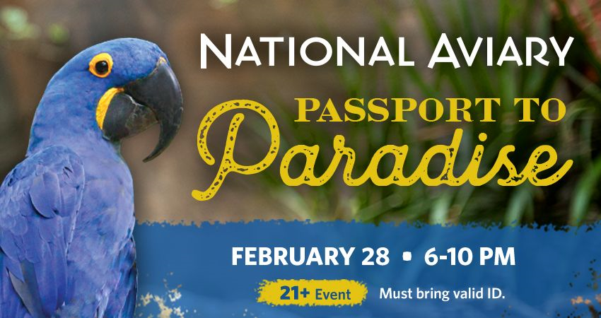 Tickets for Passport to Paradise (21+ Event) in Pittsburgh from ShowClix