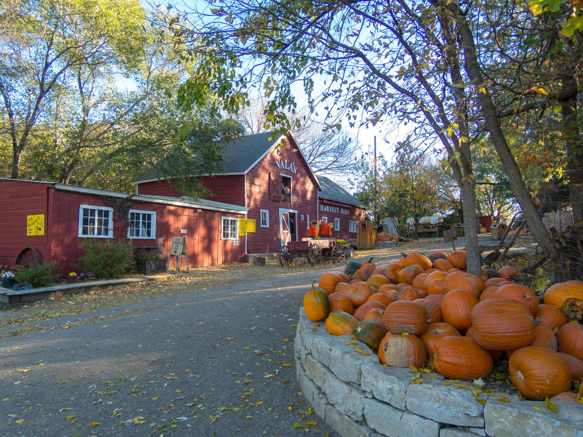 Find tickets from Vala's Pumpkin Patch
