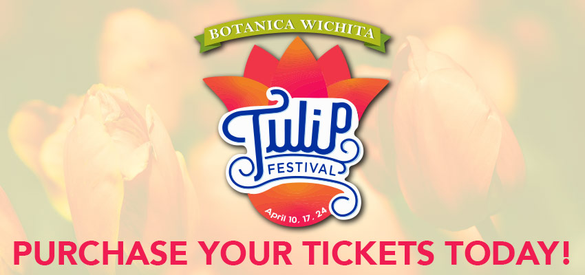 Tickets for Tulip Fest in Wichita from ShowClix